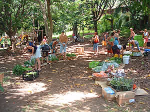 The organic market, weekly in Montezuma at 10 a.m. every Saturday Morning